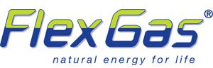 Flexstrom Gas
